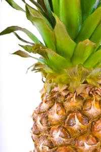edita kaye Pineapple with fronds